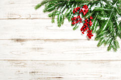 Christmas background. Evergreen tree branches red berries decora Royalty Free Stock Images