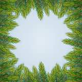 Christmas background with fir branches Royalty Free Stock Photography