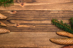 Christmas background with fir branches and cones Stock Images