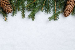Christmas background with fir branches, cones and snow Stock Photography