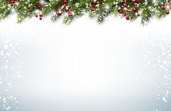 Christmas background with fir branches. Christmas background with fir branches and holly berries. Vector illustration Royalty Free Stock Image