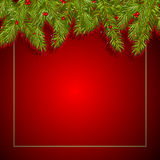 Christmas background with fir branches. And red berries Stock Photos