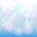 Christmas background. With fir branches and snowflakes Stock Photos