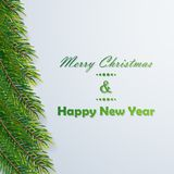 Christmas background with fir branches. Vector illustration Royalty Free Stock Photo