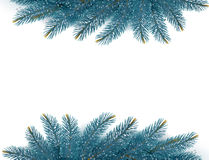 Christmas background with fir branches. Royalty Free Stock Photography