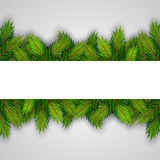 Christmas background with fir branches. Vector illustration Stock Image