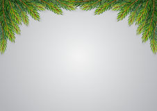 Christmas background with fir branches Royalty Free Stock Images