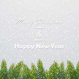 Christmas background with fir branches. Vector illustration Royalty Free Stock Images