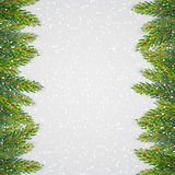 Christmas background with fir branches. Vector illustration Royalty Free Stock Photos