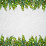 Christmas background with fir branches Royalty Free Stock Photos