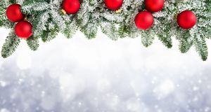 Christmas background with fir branches Royalty Free Stock Image