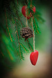 Christmas background with fir cone and heart on the fir branch Royalty Free Stock Image