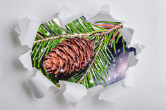 Christmas background with fir cones in the frame of torn paper Royalty Free Stock Photos