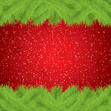 Christmas background with fir and snowflakes Royalty Free Stock Images