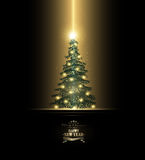 Christmas Background. With Fir, Stars And Title Inscription Stock Photography