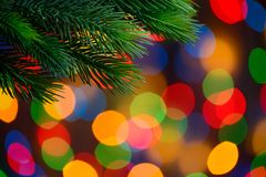 Christmas Background with Fir-tree Branch on the Holiday Lights Background Stock Images