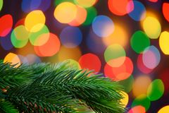 Christmas Background with Fir-tree Branch on the Holiday Lights Background Stock Photography