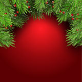 Christmas background with fir tree branches and berries 1410 Stock Images