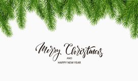 Christmas background with fir tree branches. Vector illustration.  Stock Photos