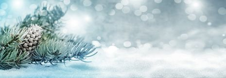 Christmas background, fir tree with cones in the snow stock photography
