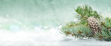 Christmas background, fir tree with cones in the snow. In front of bokeh Royalty Free Stock Image