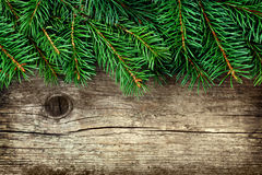 Christmas background of fir tree on old vintage wooden board, copy space for text Stock Photography