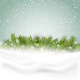 Christmas background with fir tree and snow. Flakes Stock Images