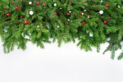 Christmas background. Christmas fir tree on white wooden background. Copy space Royalty Free Stock Image