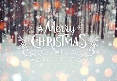 Christmas background with fir trees and blurred background of winter with text Merry Christmas and Happy New Year. Frosty winter landscape in snowy forest Royalty Free Stock Images