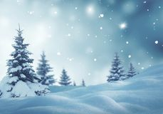 Christmas background with fir trees Royalty Free Stock Photography