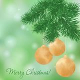 Christmas background with fir twigs Royalty Free Stock Photography