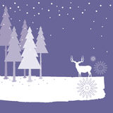 Christmas background - forest Royalty Free Stock Image