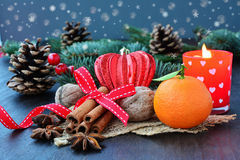 Christmas background with fruits, spices, fir and candle Stock Image