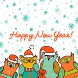 Christmas background with funny owls Stock Photo