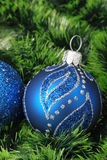 Christmas background with fur-tree Stock Image