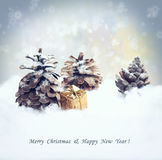 Christmas background with  gift, fir tree cone, snowfall. Stock Photo