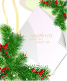 Christmas background with green branches Royalty Free Stock Photos