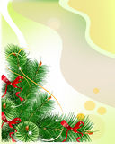 Christmas background with green branches Stock Photos