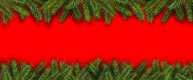 Christmas background green fir tree Stock Photography