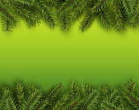 Christmas background with green fir tree Stock Photos