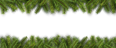 Christmas background green pine tree Stock Photography