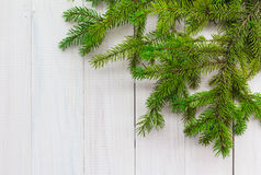 Christmas background greens spruce twigs white wooden royalty free stock photo