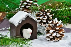 Christmas background, greeting card with white bird in bird house Royalty Free Stock Photos