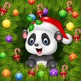 Christmas background with happy panda bear Royalty Free Stock Photo