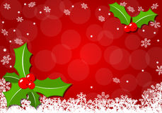 Christmas background with holly Stock Images