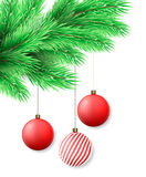 Christmas background. Merry Christmas postcard with fir tree branch and Christmas decorations. Red balls. Vector illustration Stock Photography