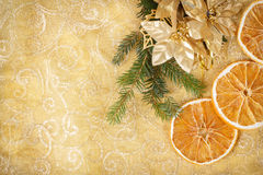 Christmas background with needles and orange slices Stock Image