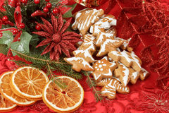 Christmas background with needles. orange slices and gingerbreads Stock Photography