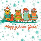 Christmas background with  owls Stock Image