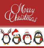Christmas background with penguins Stock Photos